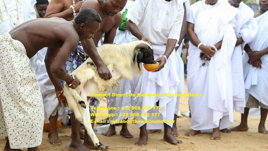 témoignage marabout sérieux, marabout d'afrique sorcier, maitre marabout bawa, les marabouts du bénin, texte de témoignage marabout, grand maitre vaudou, marabout sérieux, maitre spirituel bénin